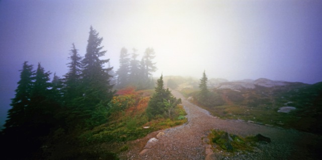 Camera: Holga 120WPCFilm: Kodak Ektar 100Location: Artist Point - Mount Baker, Washington State