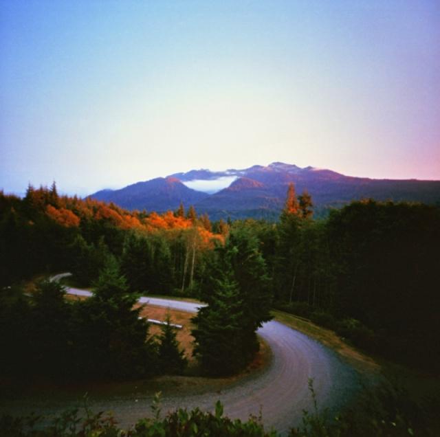 Camera: Zero Image 2000 PinholeFilm: Kodak Ektar 100Location: Mountain Loop Highway, Washington State